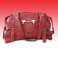 Salvatore Ferragamo Red Hand Bag