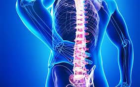 image back pain