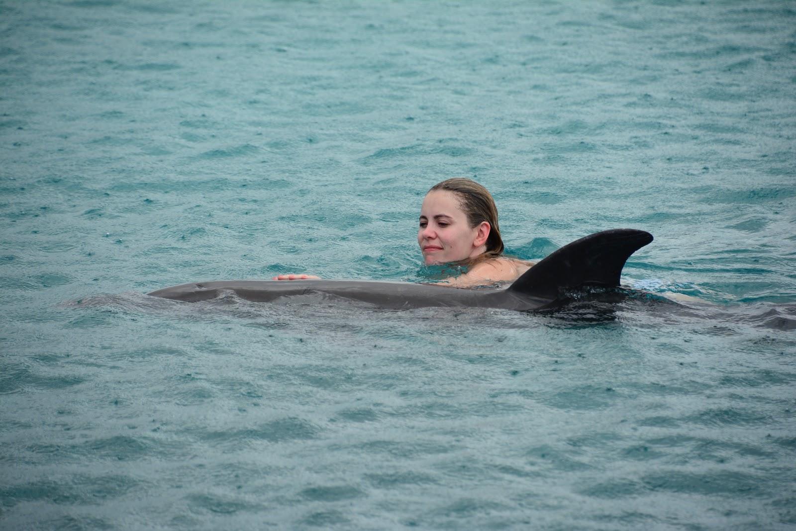 nadar-com-golfinhos-no-caribe