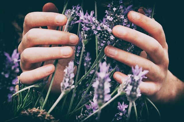 jak radzić sobie z brzydkim zapachem w domu?