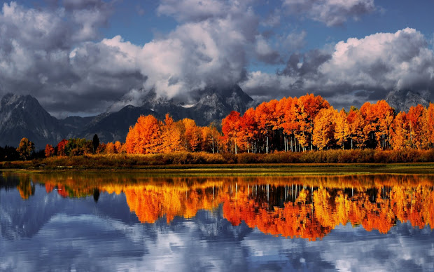 Autumn Landscape Desktop