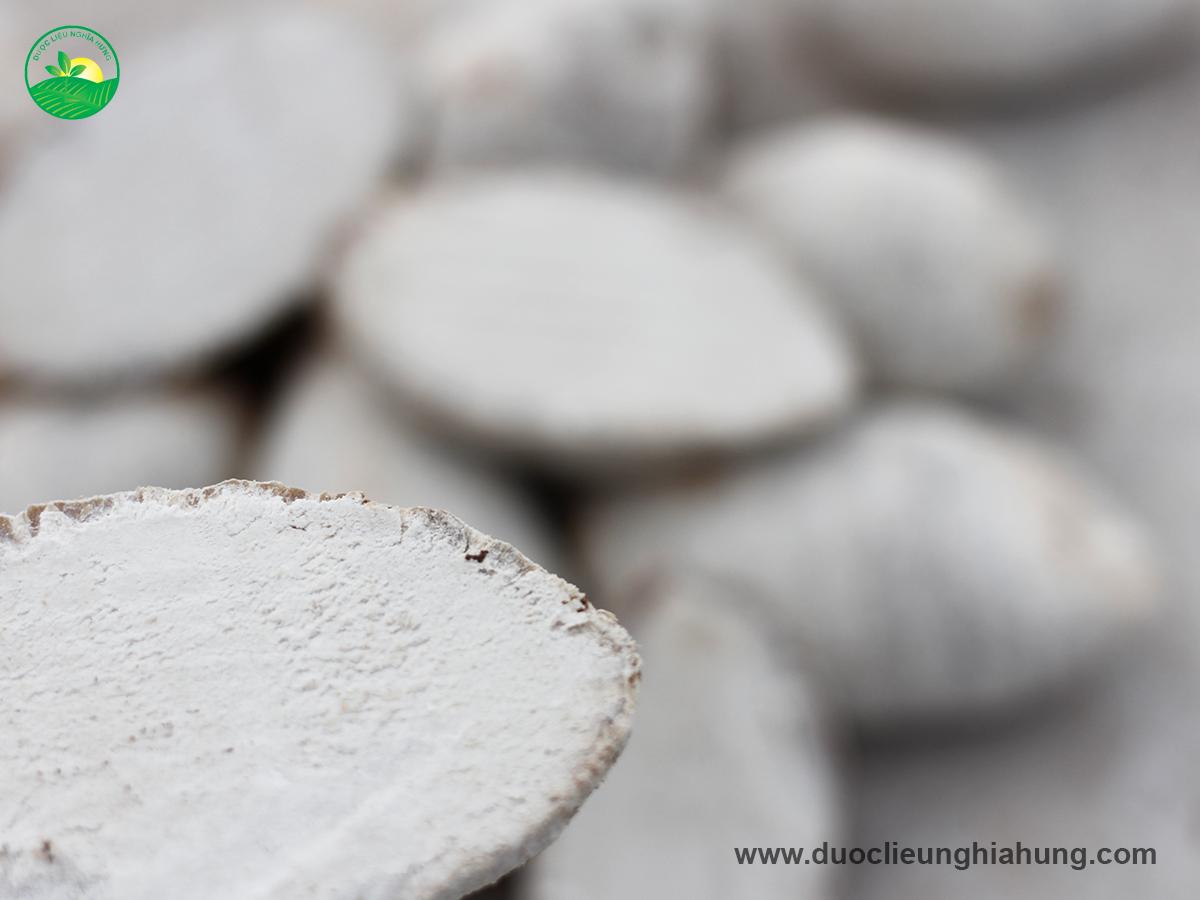Dược liệu trạch tả trắng muốt từ trong ra ngoài không bị hư hỏng