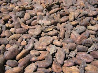 Los grandes beneficios de consumir cacao en tu dieta