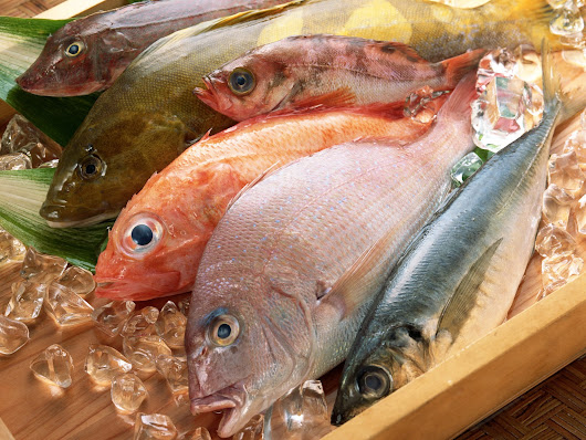 Top 10 Mistakes When Buying Sea Food