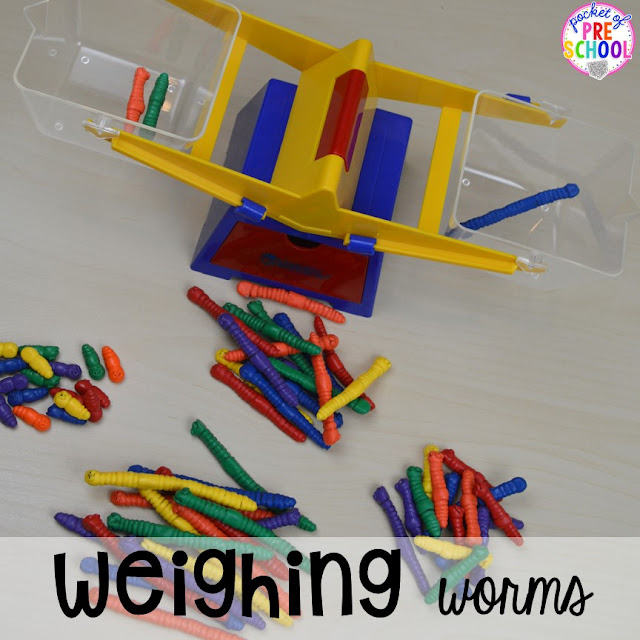 Weighing, measuring, and comparing worms for spring plus Plant Needs and Life Cycle Posters FREEBIE. Prefect for preschool, pre-k, and kindergarten.
