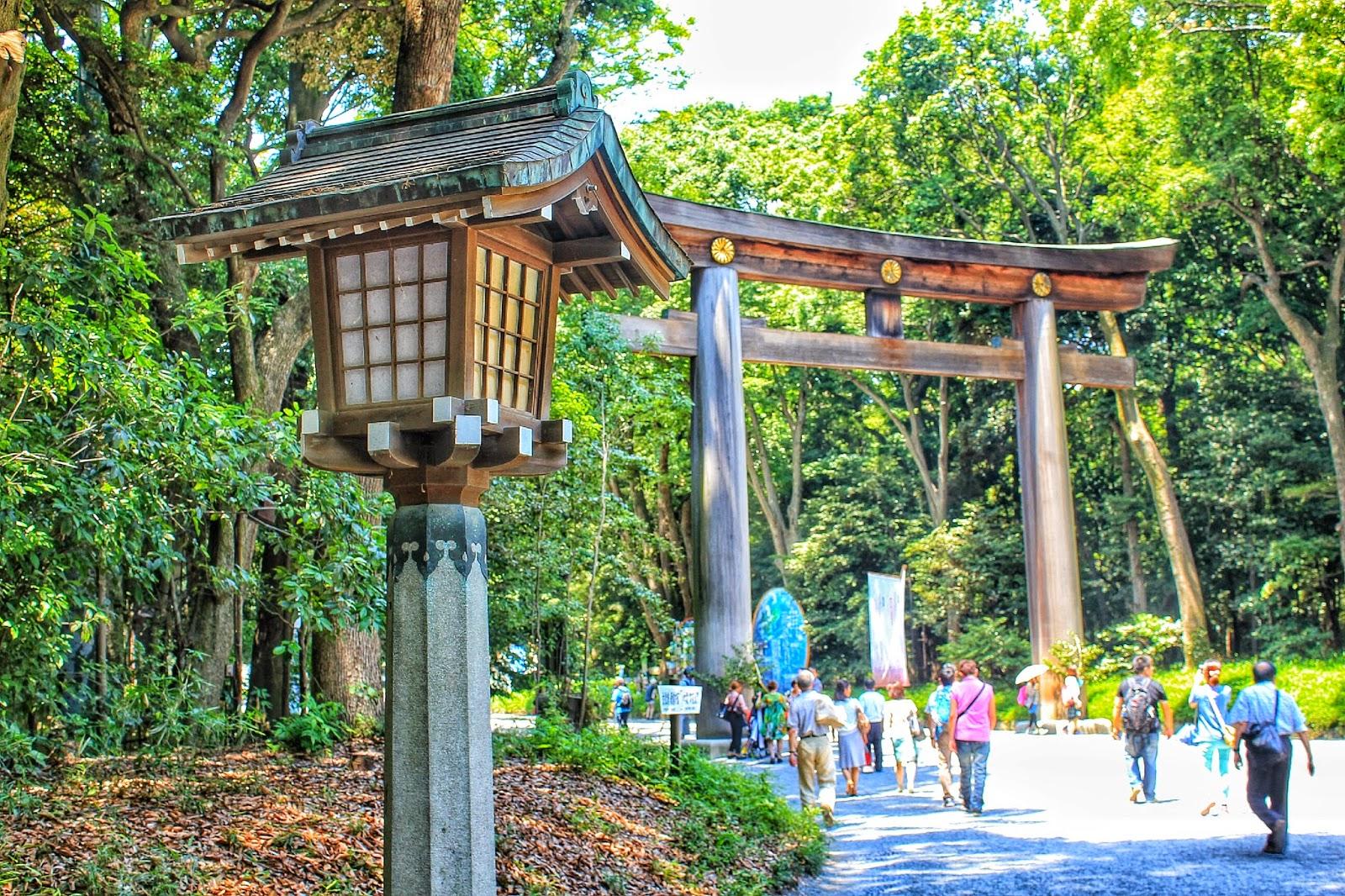Travel Bugs Tokyo Trip Meiji Jingu Shrine