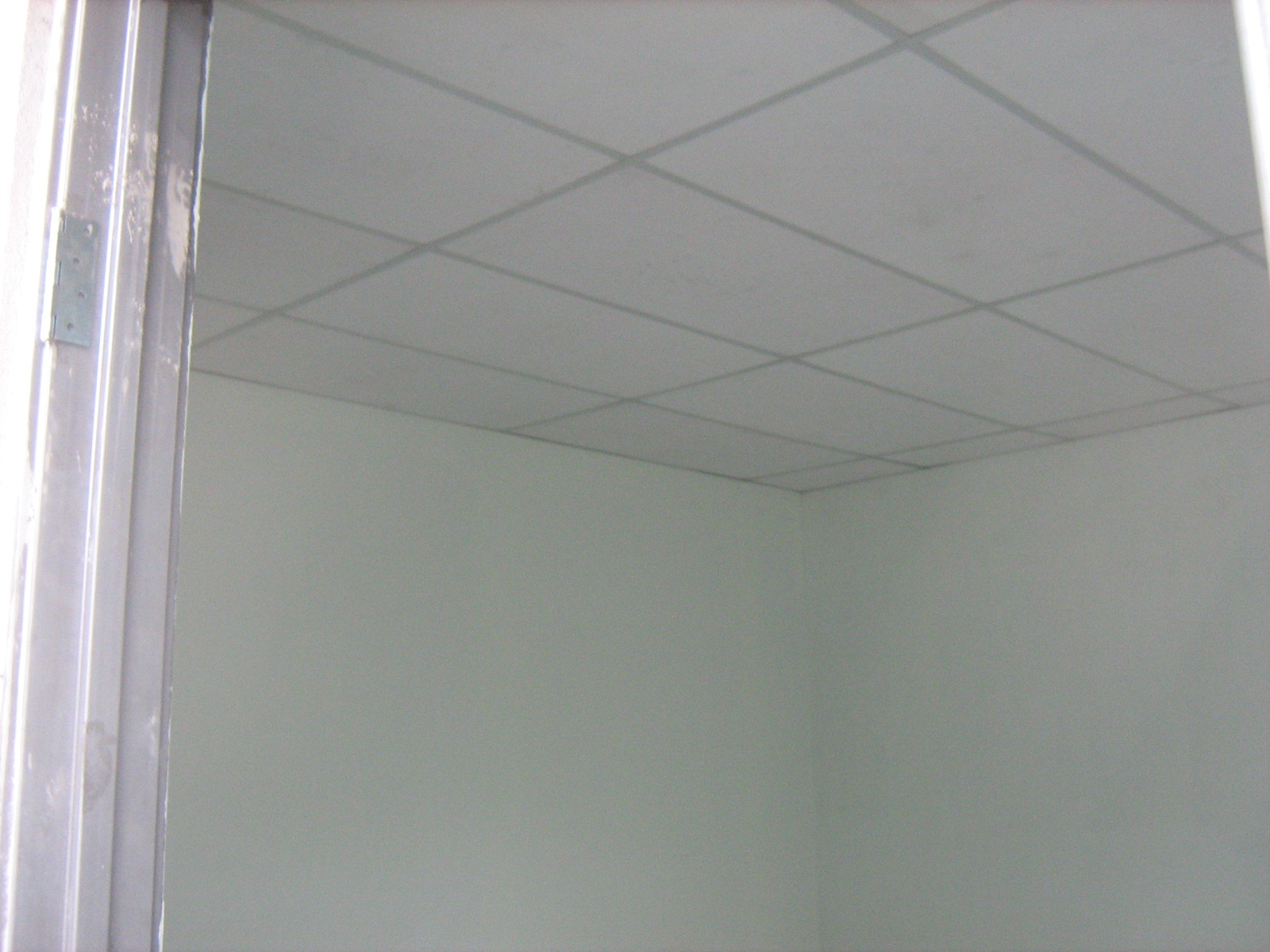 Specialist Plaster Ceiling Sbdice