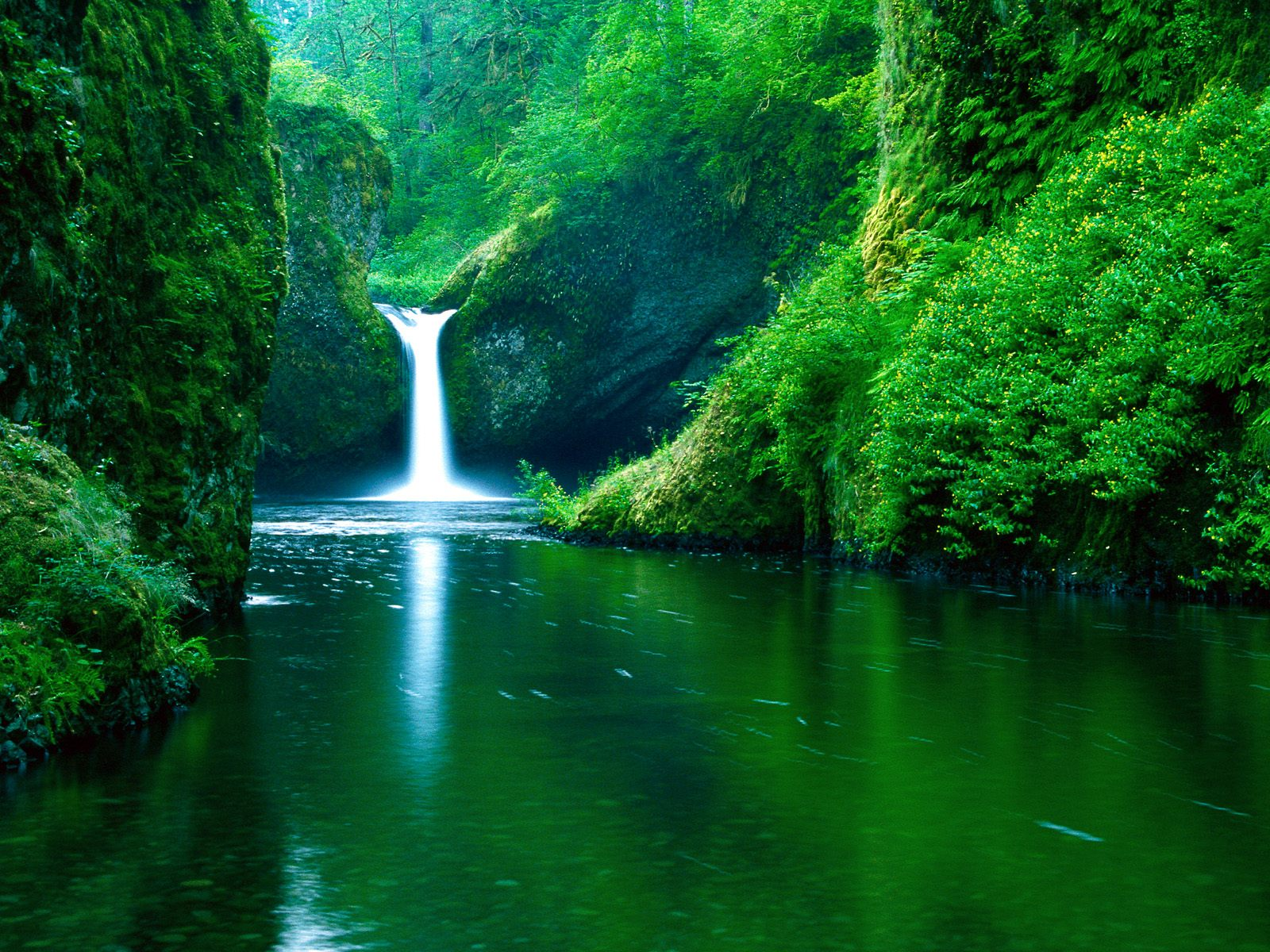 Punch Bowl Falls, Eagle Creek Wilderness Area, Columbia Rive