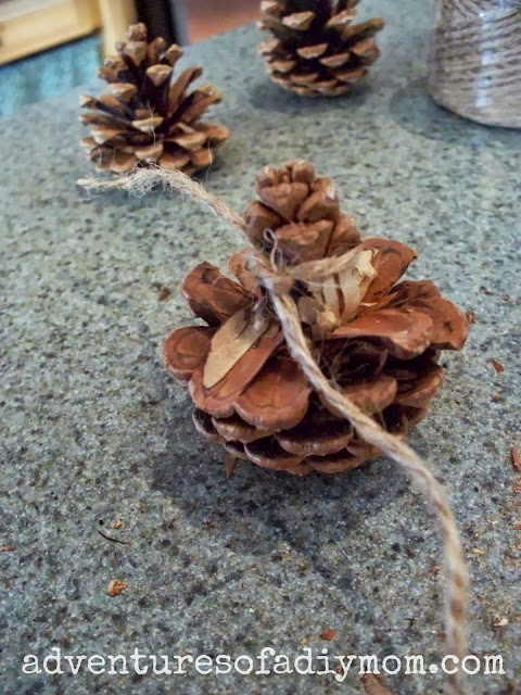 how to cut pine cones