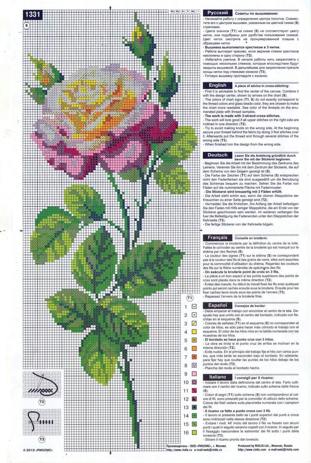 дивный цветок риолис