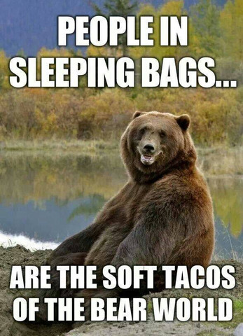 People in sleeping bags are the soft tacos of the bear world - Funny hiking camping memes and real life story -- city dogs hate camping!  Hilarious humor post for dog or nature lovers! via Devastate Boredom