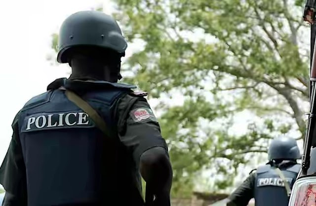 Two senior public health workers in police custody for allegedly stealing baby in Cross River