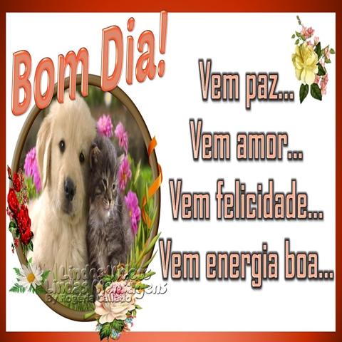 Vem paz...  Vem amor...  Vem felicidade...  Vem energia boa... Bom dia
