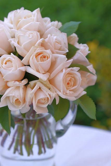 #softgardenroses #trandafiripastel