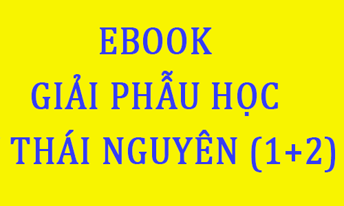 ebook giáo trình giải phẫu học đại học y duoc thai nguyen pdf - toi hoc y