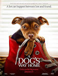 Pelicula Mis Huellas a Casa (A dogs way home) (2019)