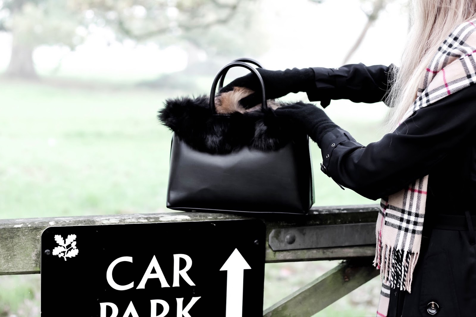 Zara Black Faux Fur Mini Handbag
