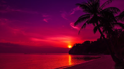 red sunset hd wallpaper