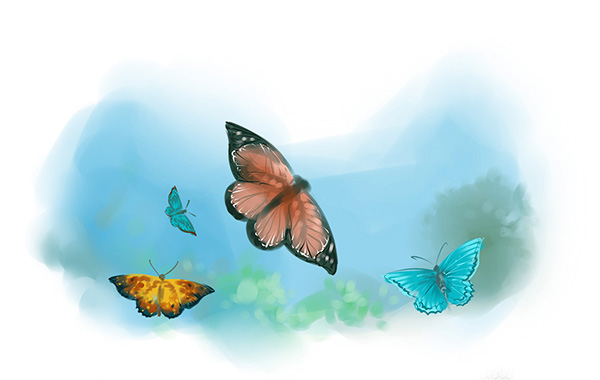 islamic book butterflies story illustratiion
