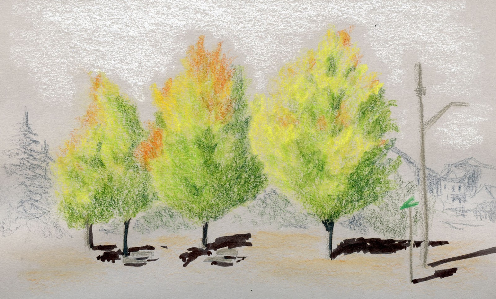 Attractive Drawing Trees With Colored Pencil Ideas - Coloring Page ...
