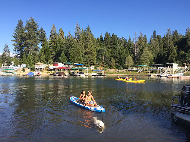 kids, paddleboards, dogs, lake arrowhead