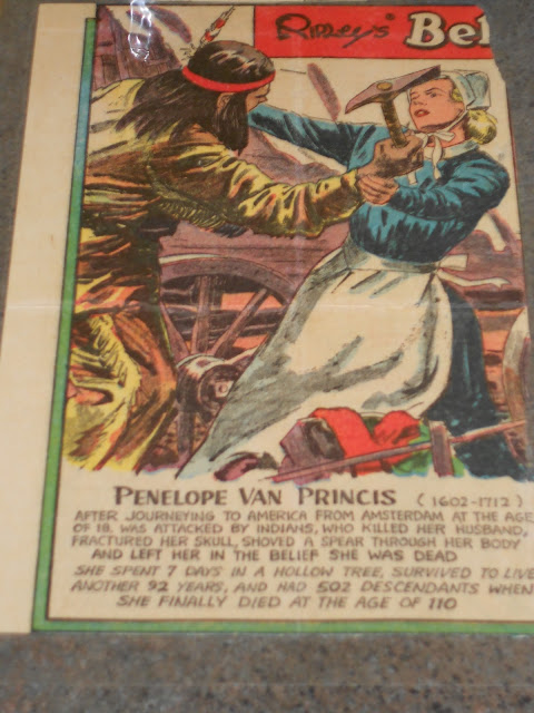 Penelope Van Princess Article