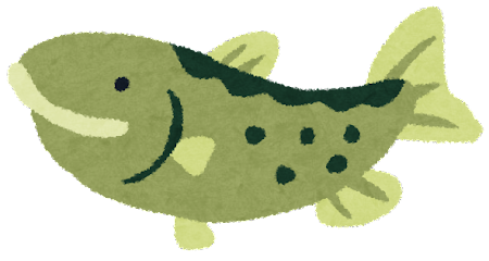 鮭・サーモンのイラスト(魚)