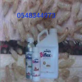 شركة مكافحة النمل الأبيض بجدة 0548344973