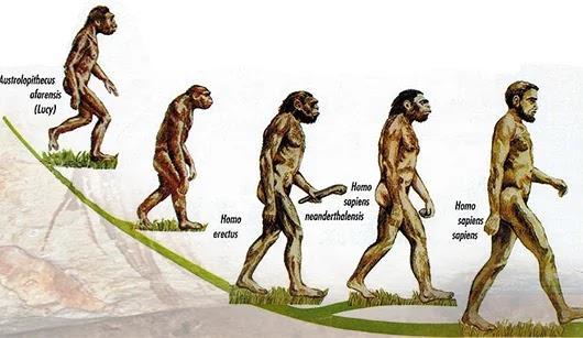 Sejarah Manusia Purba Afrika