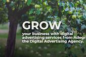 Jasa Advertising Agency Bisa Menguntungkan untuk Bisnis