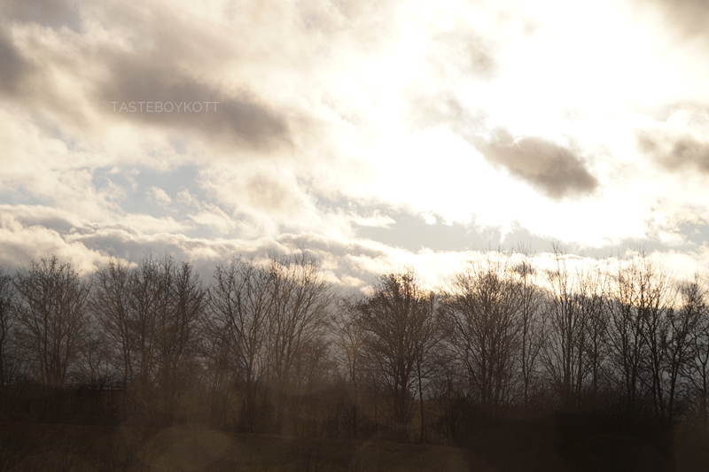 Sunny heaven after rain with raindrop bokeh on my window