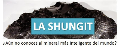 www.lashungit.com