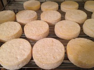 la laiterie de paris, faire son fromage, faire de la tome, ferme de logodec, blog fromage, blog fromage maison, tour du monde fromage, visite fromagerie, faire du fromage, fromage paris