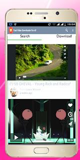 Facebook video downloader fast