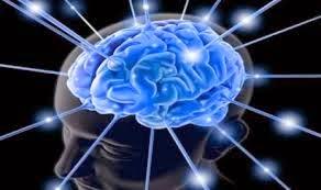 7 Cara Meningkatkan Kecerdasan Secara Efektif