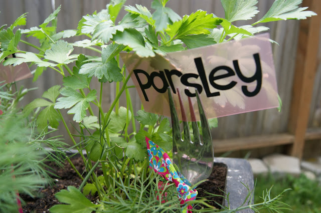 Herb garden markers with vinyl @michellepaigeblogs.com