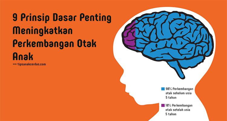 Meningkatkan Perkembangan Otak Anak Dengan 9 Prinsip Dasar Penting