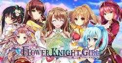 http://www.kopalniammo.pl/p/flower-knight-girl.html