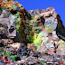 The Colorful Outcrops of Turgite in New Mexico