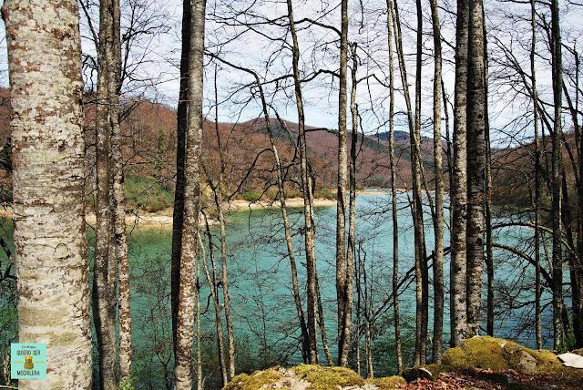 Embalse de Irabia en la Selva de Irati, Navarra