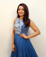 Catherine Tresa Gorgeous Photo Stills TollywoodBlog