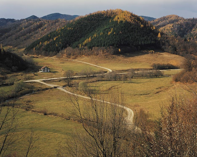 Grapevine Creek, W Virginia - Bârsa Fierului, Brașov, 2015 © Lucian Bran
