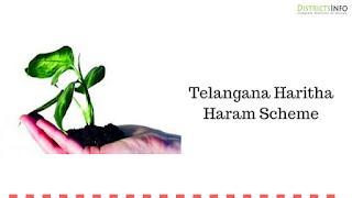 Telangana Haritha Haram Scheme