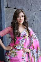 Angela Krislinzki Rogue Movie Fame Telugu Actress in Saree Backless Choli 119.JPG