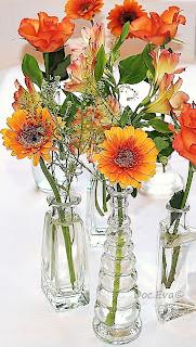 Orangefarbene Blumen