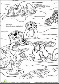 Family Otter Swimming On River - Coloring Pages