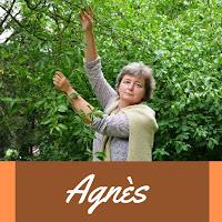 http://www.noimpactjette.be/2017/08/participante-agnes.html