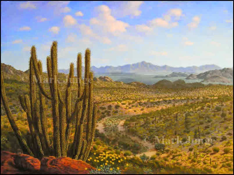 southwest,desert,painting,art,artwork,print,Arizona,AZ,Sonoran,Organ Pipe Cactus National Monument