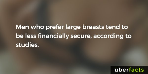 uber facts about men that like big breasts