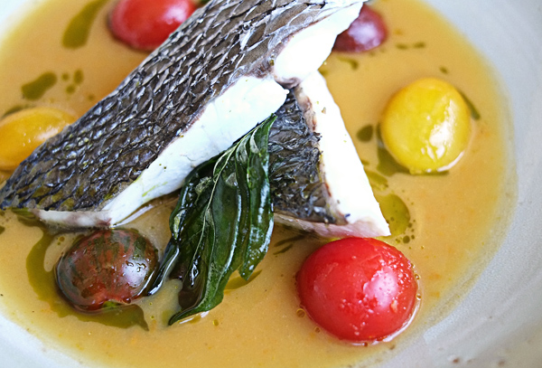 Steamed Mulloway With Spicy Lucariello Tomato by Gabriele Taddeucci of Osteria Balla Manfredi. Photographed by Kent Johnson.